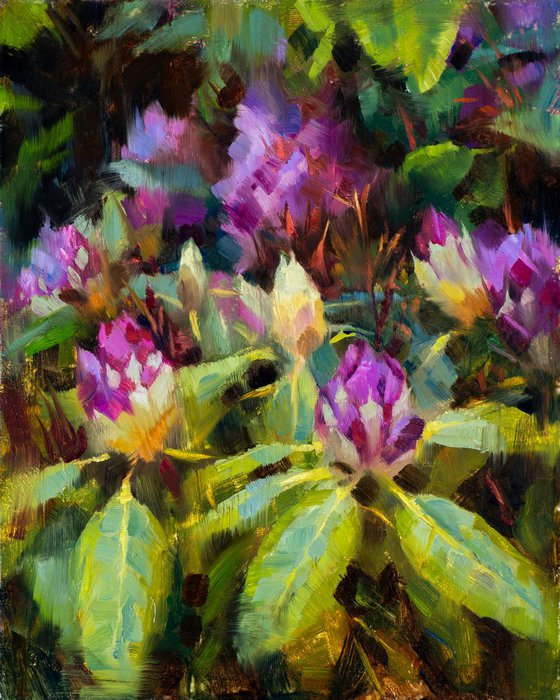 'Rhododendron' - Plein Air, Original Oil Painting, One of a kind