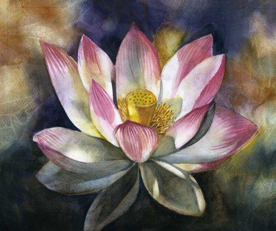 Lotus blossom watercolor