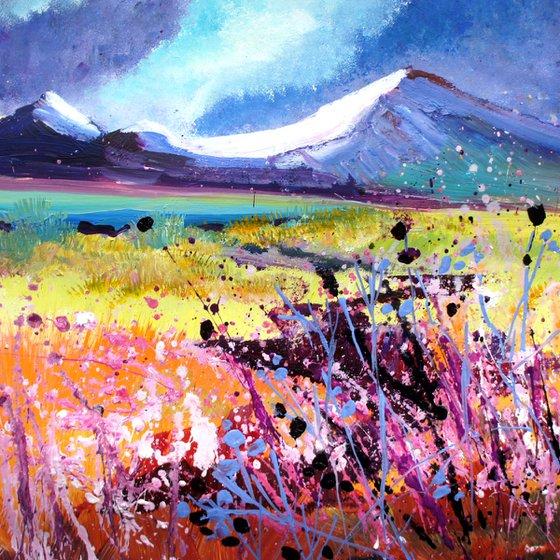 Springtime in the Scottish Highlands