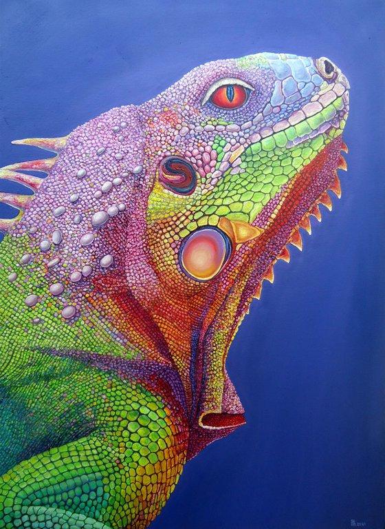 """Iguana II"""