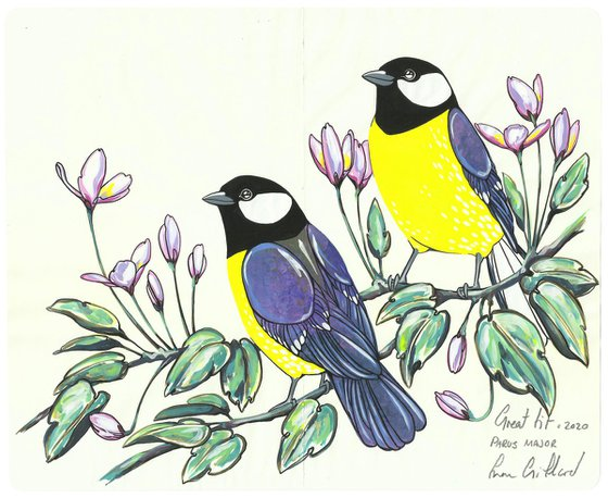 Great Tit and Clematis