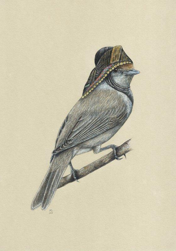 """Original pastel drawing bird """"Eurasian blackcap"""""""