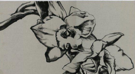 dendrobium orchid watercolor