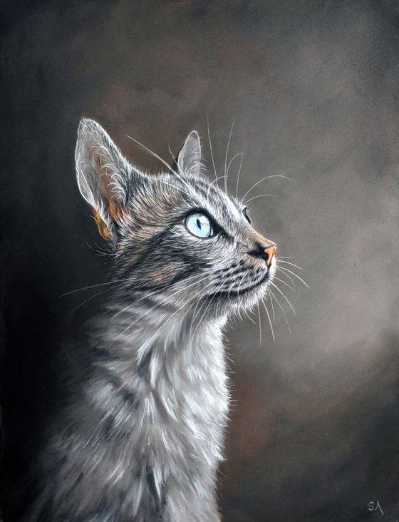 Cats Eyes VIII  (Original Painting)