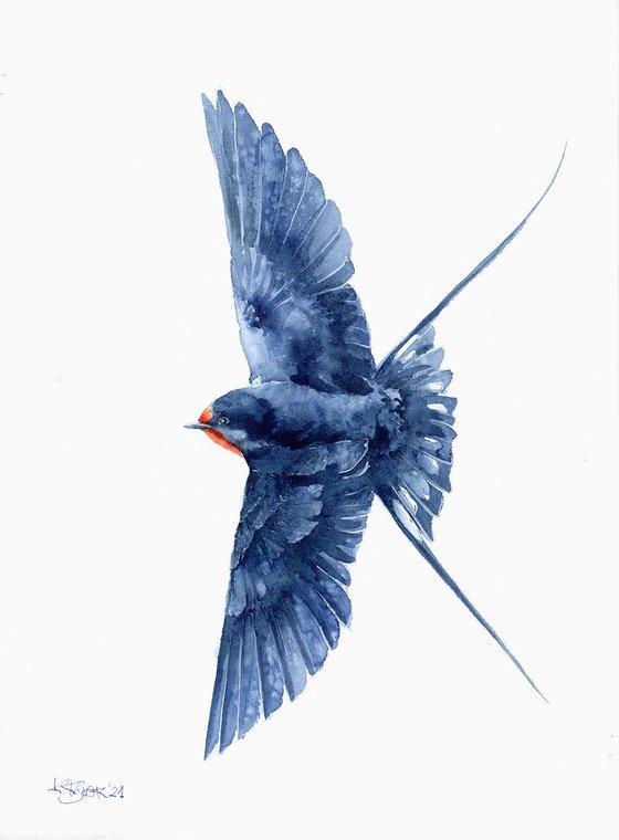 Flying swallow, wildlife, birds watercolours