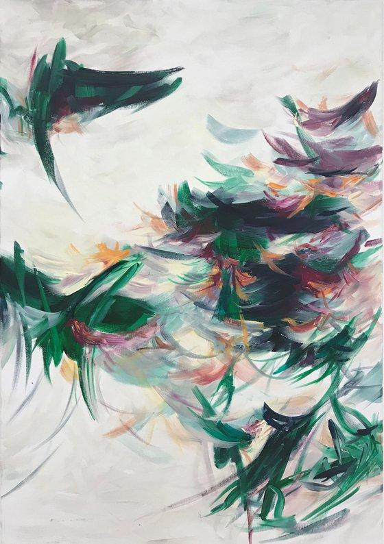 Flowers - conifers