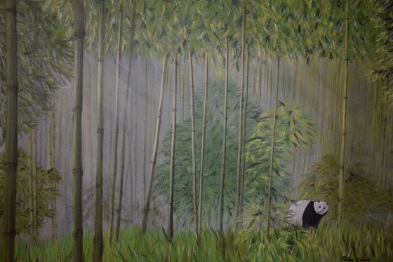 panda in bamboos