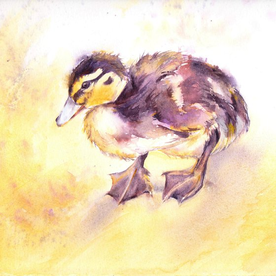 Duckling, an original watercolour painting