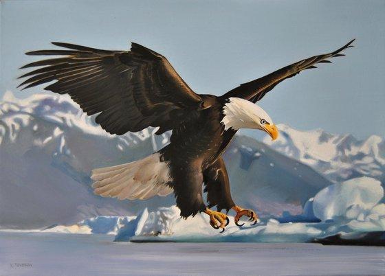Eagle, Oil on canvas