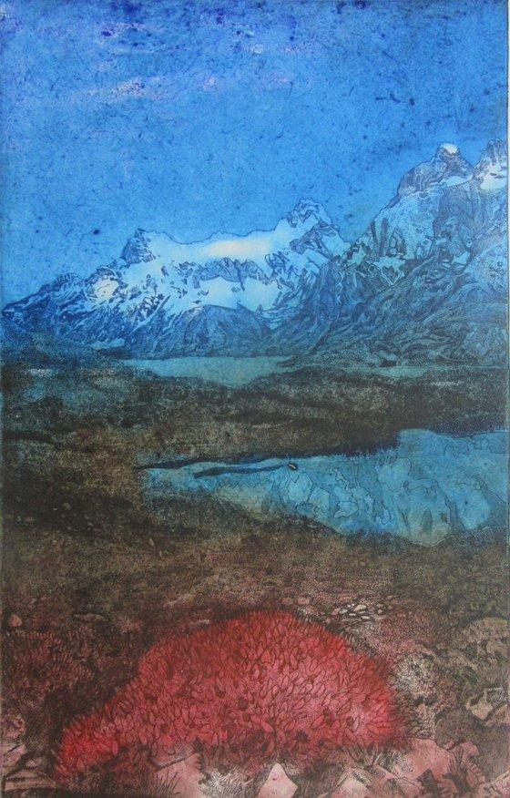 The Fire Bush, Torres Del Paine National Park, South America (Colour1)