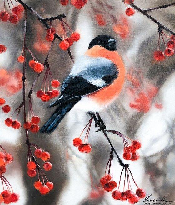 Bullfinch among the berries