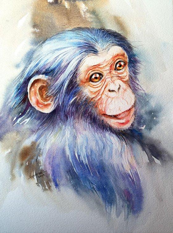 KiKi the Baby Chimpanzee