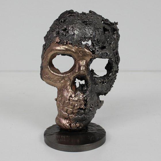 Skull LXXVII - vanity steel Bronze Sculpture - Buil