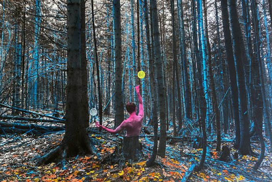 The Dancer in the blue forest