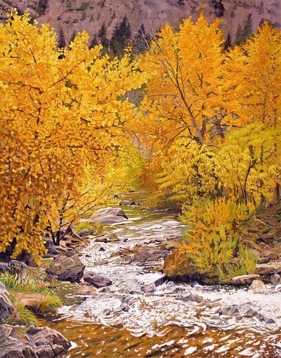 Fall on Bear Creek