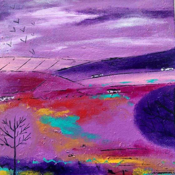 Purple Rush - Scottish Landscape