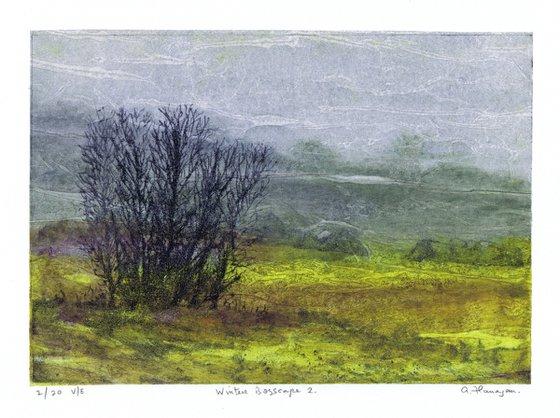 Winter Bogscape 2 -  Ireland