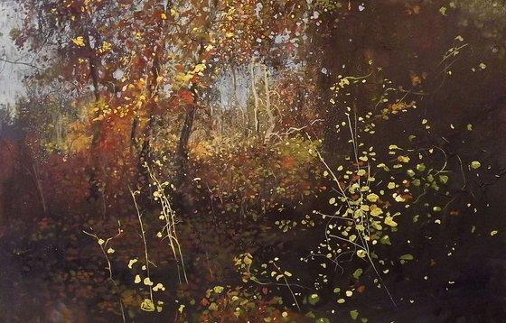 Autumn park in Kyiv