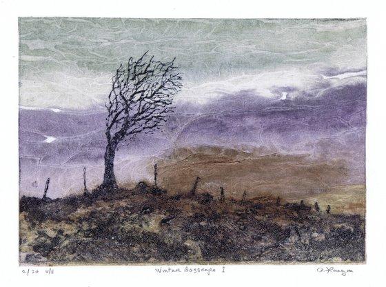 Winter Bogscape 1 -  Ireland