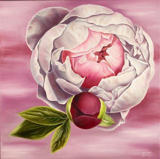 The universe of Peonies / Original peonies oil painting / Floral art / White peonies