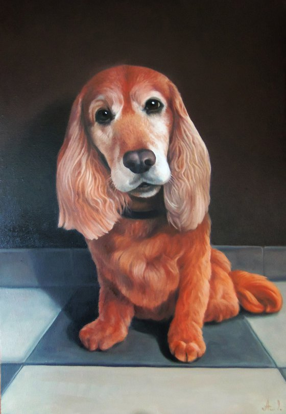 Honey - COMMISSION WORK (40x60cm, oil painting, ready to hang)