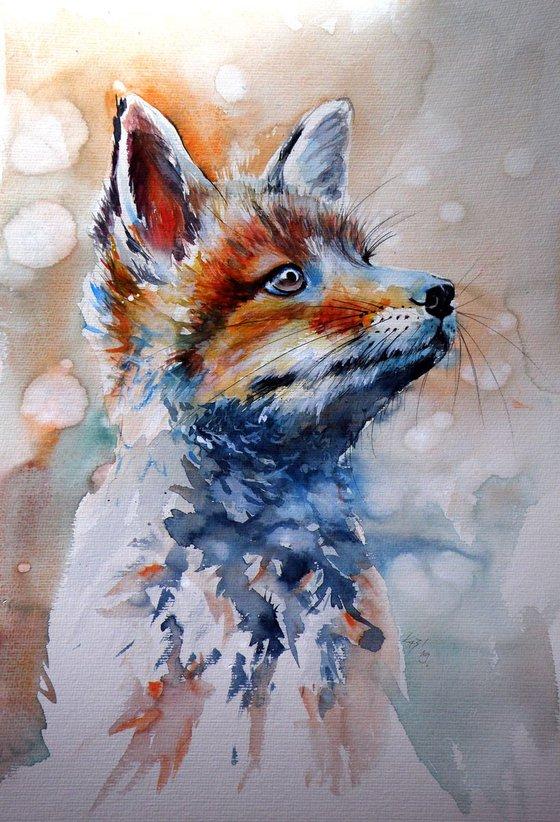 Fox puppy 50 x 35 cm