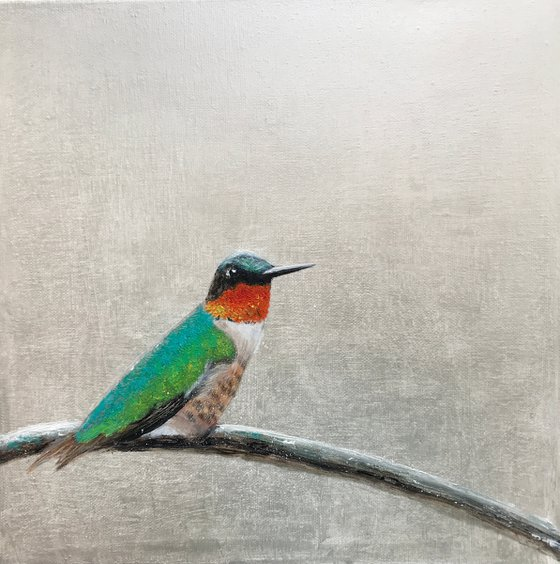 Ruby-throated Hummingbird ~ on silver