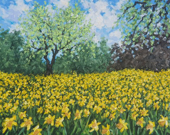 'A host of golden daffodils '