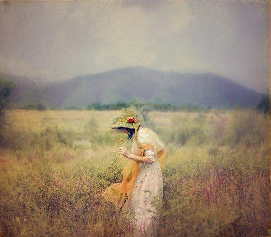 'Monet's Meadow'
