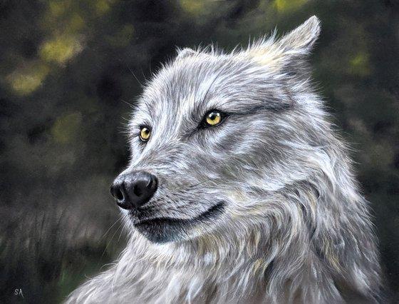 WOLF  (Original Painting)