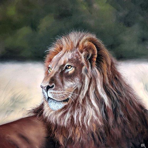Lion (Original Pastel Painting)