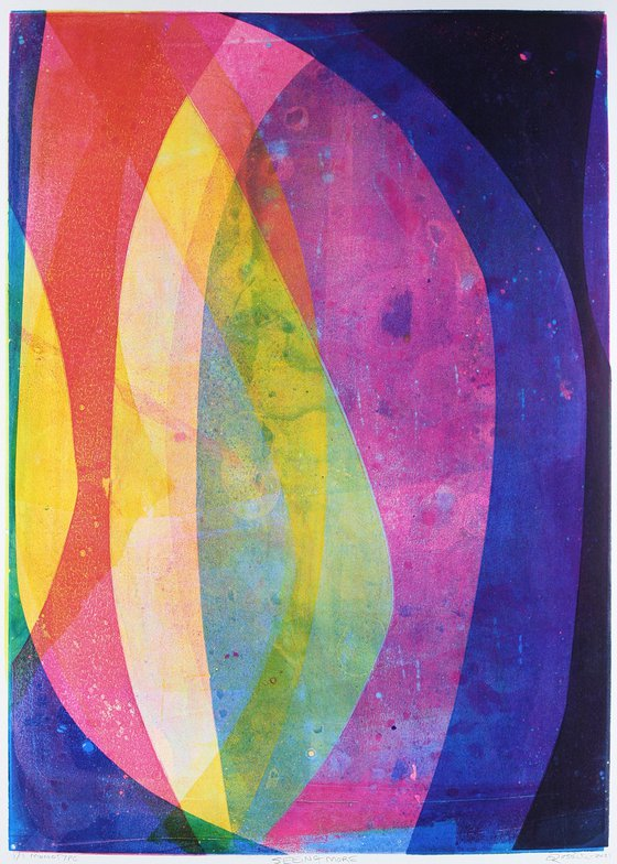 Seeing More - Unmounted Signed Monotype
