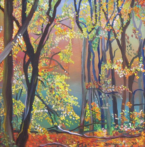 Forest still life 7