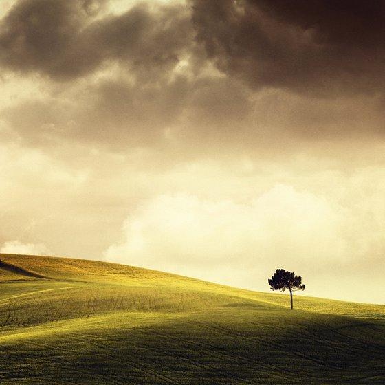 Tuscany Vibes - Landscape Art Photo, Small Edition