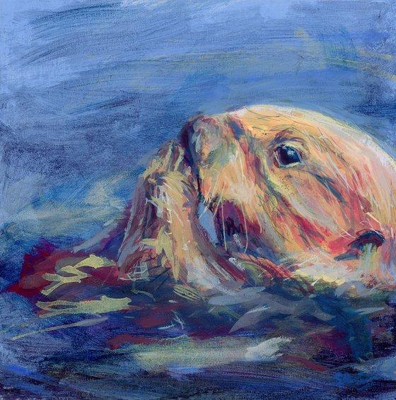 Munching Sea Otter