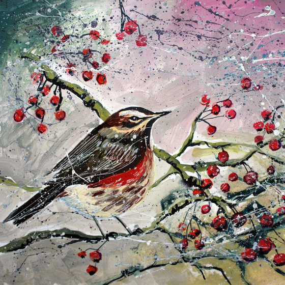 Redwing with Berries