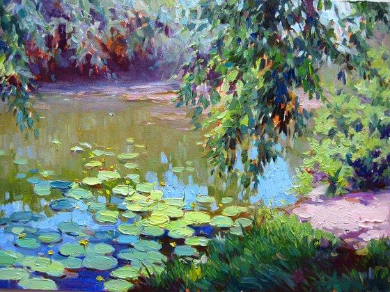 Water Lily Lake