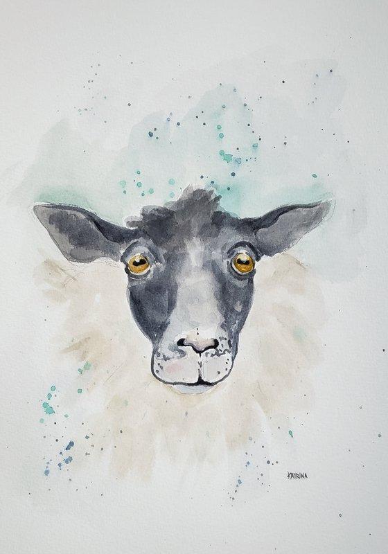 """""""Bewildered"""" - Sheep - Animals - Farm"""