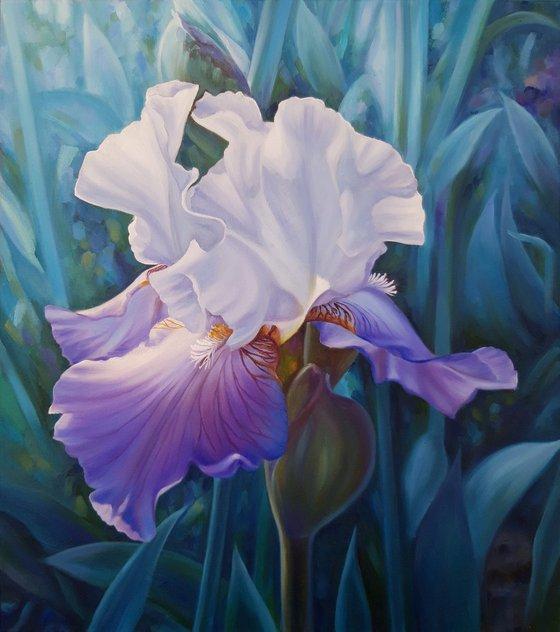 """Spring iris"", oil floral painting, flower artwork"