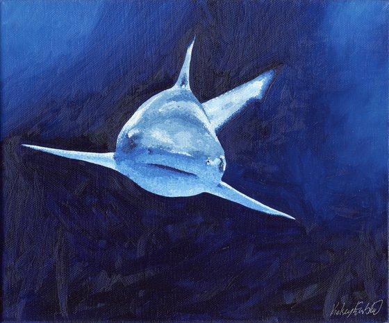 "Blacktip Shark Oil Painting - ""Brave"""