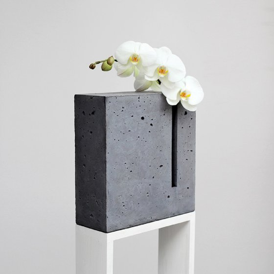 """""""Color and Shape: Gray+Orchid"""""""