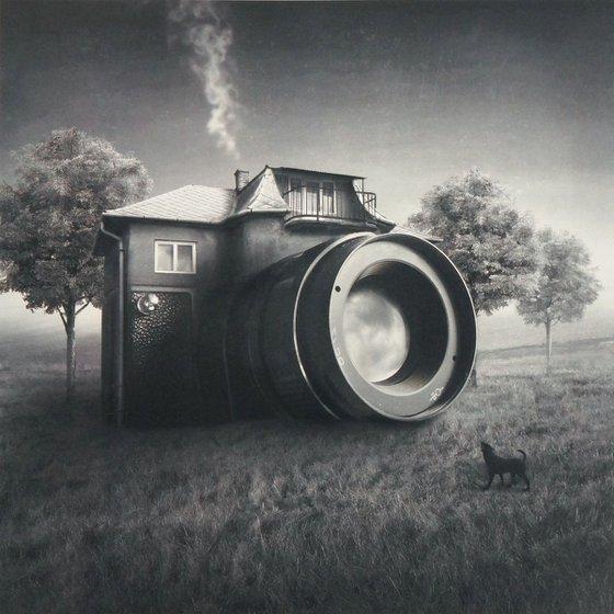 Camera Domestica