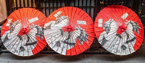 "Japanese Parasols - 50x22"" LARGE Limited Edition Print"