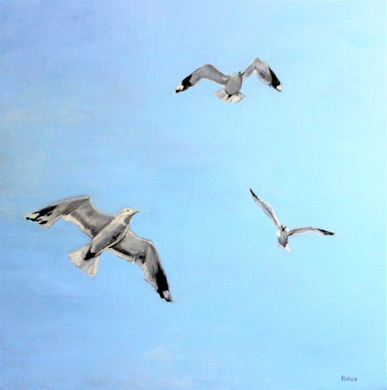 To The North - Seagulls