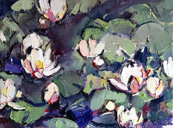 Water lilies. Oil original painting. Christmas gift