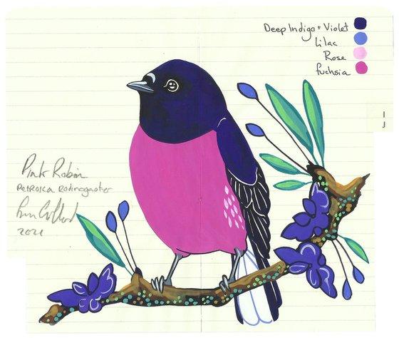 Birds of Australia: Pink Robin