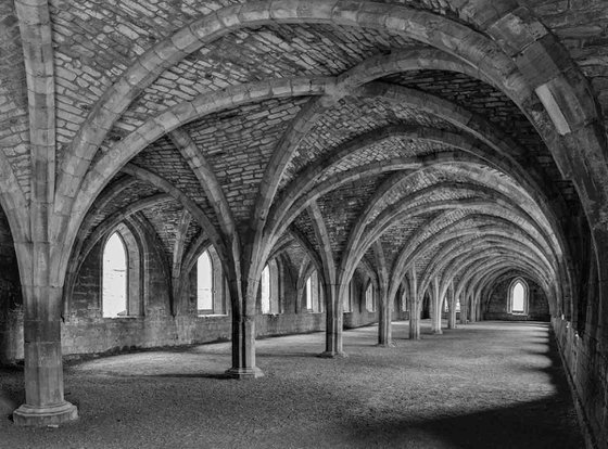 Fountains Abbey Cloisters  - A3 Limited Edition Print