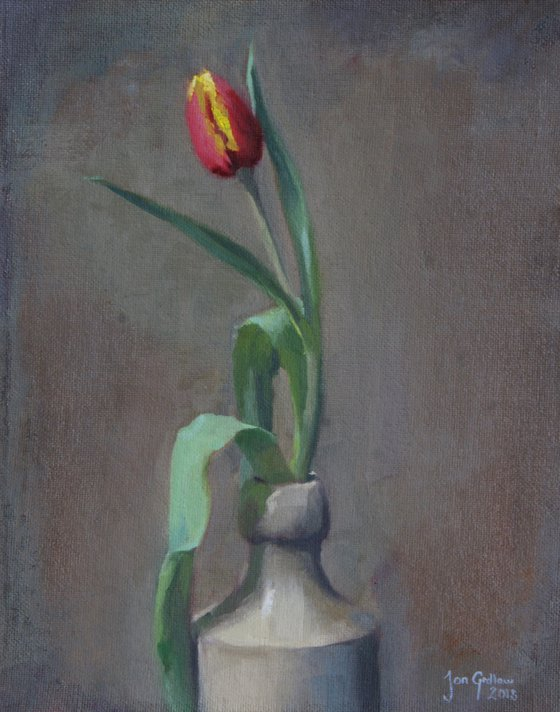 Solo Tulip