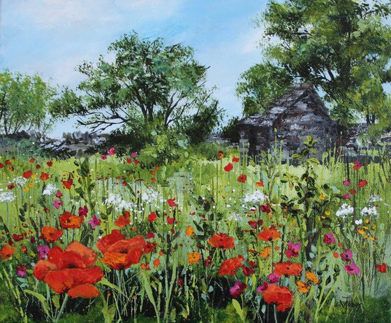 Old barn and wild poppies
