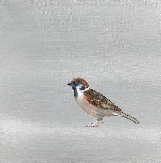 A Little Bird Told Me II